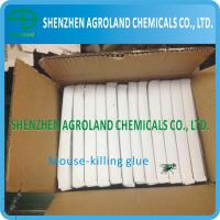 Best Eco-Friendly Wood Mouse Glue Boards , Transparent Liquid Plastic Box Mouse Glue wholesale