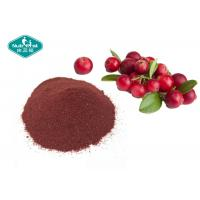 Best Cranberry Standardized Herbal Extracts Food Grade Healthy Natural Soluble In Water wholesale