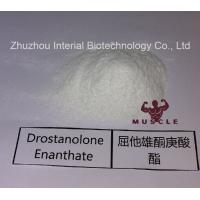 Best Stronges Steroid Drostanolone Enanthate / Masteron Enanthate Powder For Cutting Cycles CAS 472-61-145 wholesale
