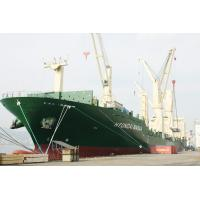 Best FCL Shipment to Middle East,Red Sea from Shenzhen/Foshan wholesale