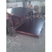 Buy cheap Waterproof Plywood, Concrete Shuttering Plywood for Construction,Phenolic from wholesalers