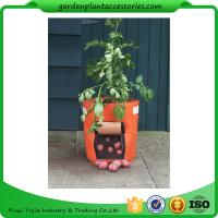 Best Outdoor Garden Plant Accessories , Classic Line Tequila Sunrise Fabric Planter garden bags wholesale