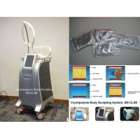 Best Fat Freeze Cryolipolysis Body Slimming Machine Fat Burning Equipment With Cooling Technology wholesale