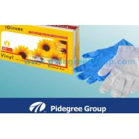 Ambidextrous Vinyl Exam Gloves Clear With 240MM Length For Food Grade