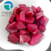 Best Red Color Plant Extract Powder Natural Food Colorant Beet Root Powder Anti Tumor wholesale