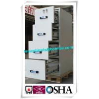 Best Safety Fire Rated File Cabinets With Separately Mechanical Lock For Laboratory wholesale