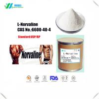 Best Crystalline L Norvaline Powder , Essential Amino Acids Supplement CAS 6600 40 4 wholesale