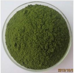 Food Grade Dietetic Drink Wheat Grass Juice Powder Professional Supplier