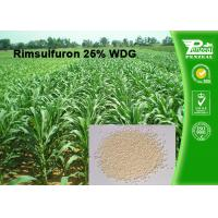 Best Rimsulfuron 25% WDG Selective Weed Killer For Lawns / Selective Herbicide For Maize wholesale