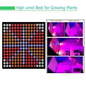 Best Indoor Garden Full Spectrum LED Grow Lights For Reenhouses , 75W Wattage wholesale