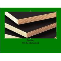 Best constrution plywood with combi core wholesale