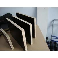 Best full poplar Film faced plywood wholesale