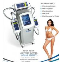 Best 2015 hot sale! fat reducing body shape system Kryolipolys fat freezing equipment wholesale