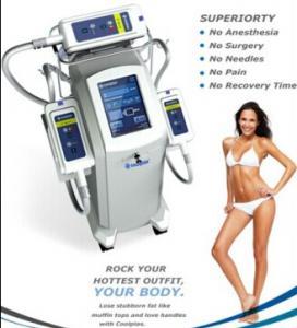 Best Cryolipolysis vacuum cryo fat freeze machine high efficiency slimming machine wholesale