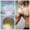 Cheap Oral Male Enhancement CAS 57-85-2 Deca Durabolin Steroids Testosterone Propionate 150mg/ml wholesale