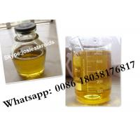 Best Yellow Anabolic Steroids Testosterone Boldenone Undecylenate For Fat Burning CAS 13103-34-9 wholesale