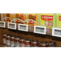 Cheap esl /electronic shelf label with preventing stealing design for supermarket and for sale