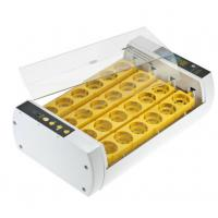 Best Durable Operation Simple Poultry Egg Incubator , Fully Automatic Egg Incubator wholesale