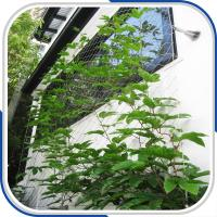 Best architectural 316L stainless steel rope mesh plant trellis wholesale