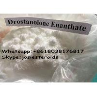 Best Natural Anabolic Steroid Injection Drostanolone Enanthate / Masteron Enanthate Muscle Gain wholesale