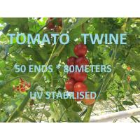 Best Greenhouse Tomato Tying Twine Colorful Plastic Garden Packing Raffia String wholesale