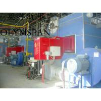Best Low Pressure Horizontal Heating Thermal Gas Oil Fired Boiler , High Temperature wholesale