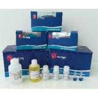 Best High Pure DNA Isolation Kit , Prestained 50bp / 100bp / 200bp / 500bp DNA Ladder wholesale