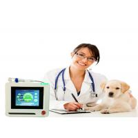 Best Dogs Cats Pets Therapy Veterinary Laser Equipment , Veterinary Cold Laser Therapy Machine wholesale