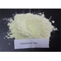 Best Synthetic Glucocorticoid Boldenone Steroids Prednisolone-21-acetate Prednisolone Acetate wholesale