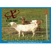 Best Corrosion Resistance Welded Wire Livestock Panels With ISO9001 / 2008 Certificate wholesale