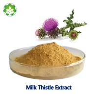 Best China wild herbal dietary supplement milk thistle seed extract medicine raw material for liver wholesale