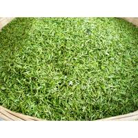 China Morocco Green Tea Supplier with Quality China Green Tea 41022A on sale