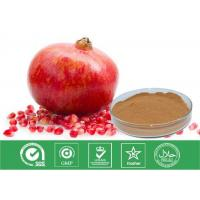 Best Cosmetic Grade Natural Punica Granatum Extract Anti Oxidant / Descenting Blood Pressure wholesale