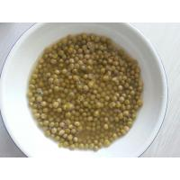Best Canned Green Peas Canned Vegetable in Water wholesale