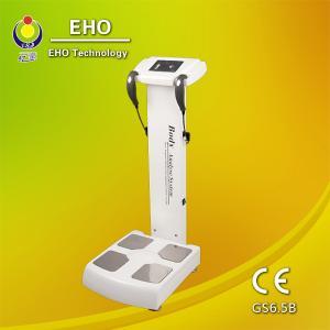 China GS6.5B body fat calculation/body health checking machine/body analyzer on sale