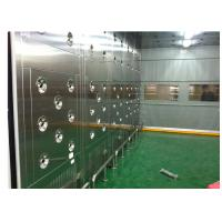 Best Custom Class 10000 Clean Room Air Shower Passing Tunnel With Automatic Door wholesale