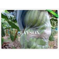 China UV Stabilizer Fruit Tree Netting Bags for Banana / Grape / Mango PPSB Non Woven on sale