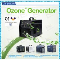 Best Electrical Swimming Pool Small Ozone Generator For Water Sterilizer wholesale