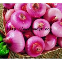 Buy cheap Fresh Onion Green Products , No Irregular Shape from wholesalers
