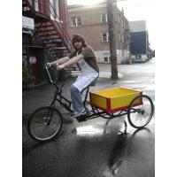 Best waterproof cargo box tricycle with CE wholesale