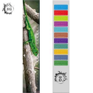 Best High Definition Motion 3D Lenticular Ruler Animal Design For Students wholesale