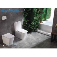 Best High end European Standard Wall Faced Toilet Ceramic Two Piece 545*360*410mm wholesale