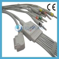 Best Kenz PC-109 10 Lead EKG Cable with leadwires;EKG Cable with leadwires wholesale