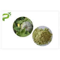 Best Plant Source Natural Dietary Supplements Pumpkin Seed Protein Powder Vegan Protein 50% 60% wholesale