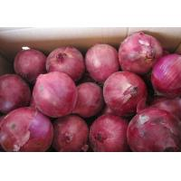 China Round Fresh Onions, Red Onions, China Onions, Natrual Fresh Red Onions on sale