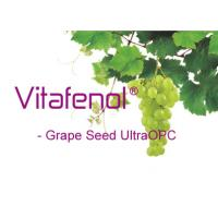 Best Grape seed extract Polyphenol;Freeze Dried, Organic Food Ingredients,Prevents Diabetes; Natural origin antioxidant facto wholesale