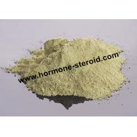 Best Xinyang Base Sex Steroid Hormones To Make Penis Erect Steroid Powder wholesale