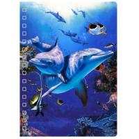 Best 45 Sheets 3D PET Cover Lenticular Spiral A5 Notebook With UV Printing wholesale