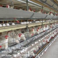 Best Poultry Automatic Equipments 96Birds H Type Battery Layer Chicken Cages For Sale wholesale