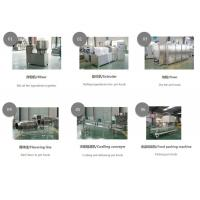 China new automatic all energy usen power saved pet food making extruder machine on sale